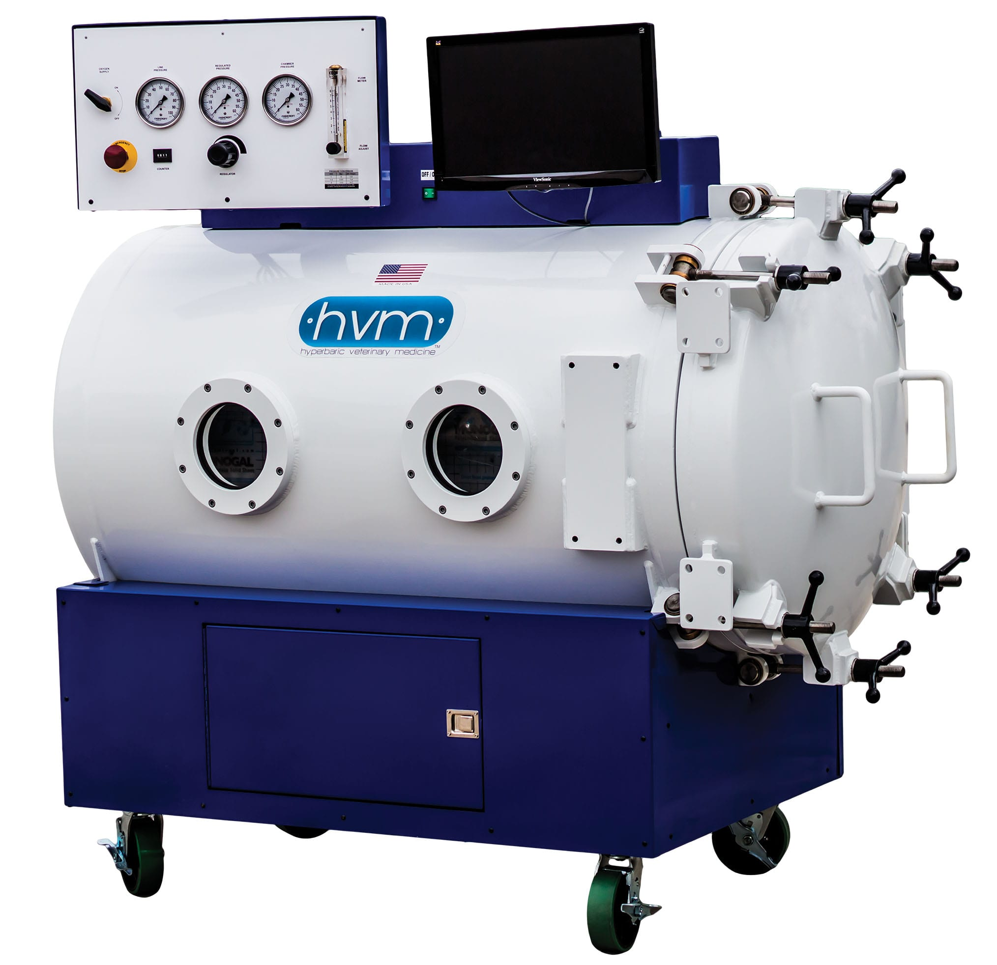 Hyperbaric Oxygen Treatment for Dogs